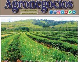 Revista Agronegócios