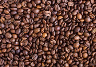 Cecafé: Brasil exportou em julho 2,826 milhões de sacas, queda de 12,8% em 1 ano